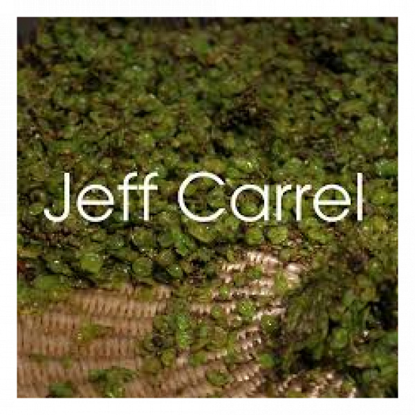 Jeff Carrel